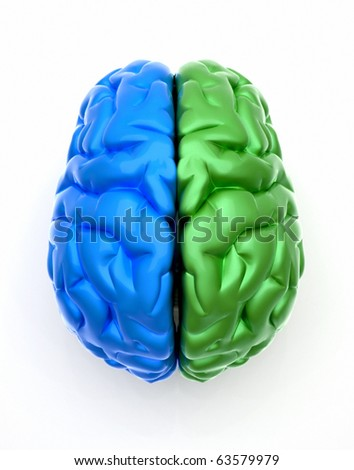 Conceptual image of a blue end green brain over white - this is a 3d render illustration - stock photo