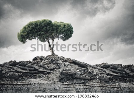 Conceptual image of green tree standing on ruins - stock photo