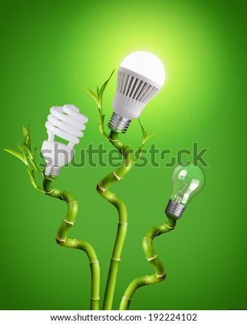 Conceptual image of - tungsten bulb, Fluorescent and LED on bamboo - stock photo