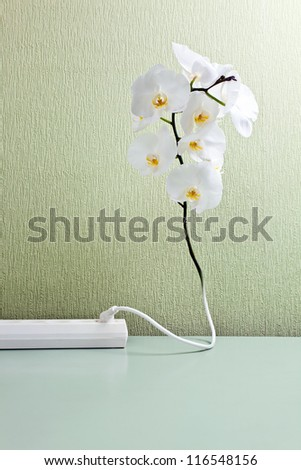 Conceptual image , the orchid is connected to an electric network - stock photo