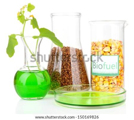Conceptual photo of bio fuel.  Isolated on white - stock photo