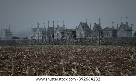 Conceptual sad image about death with corn stubble and old christian cemetery from an european remote village