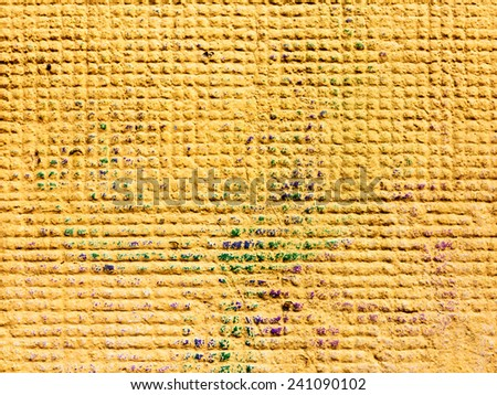 Concrete, weathered, worn, painted yellows. Landscape style. Grungy Concrete Surface. Great background or texture. - stock photo