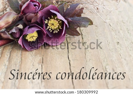 condolence card  with dark christroses/deepest sympathy/french - stock photo