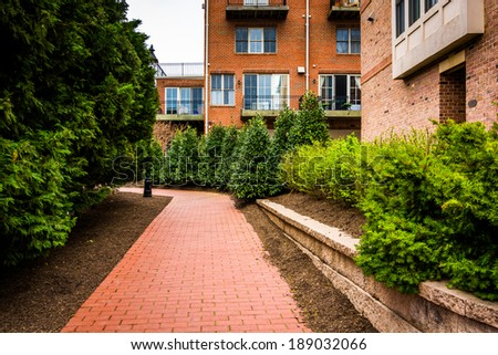 Condominiums and bushes along a brick pathway in Fells Point, Baltimore, Maryland. - stock photo