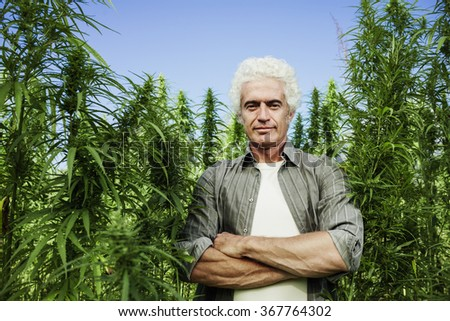 Confident farmer posing in a hemp field with arms crossed, farming and environment concept