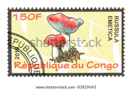 CONGO - CIRCA 2010: A stamp printed in Congo showing Russula mushroom, circa 2010 - stock photo