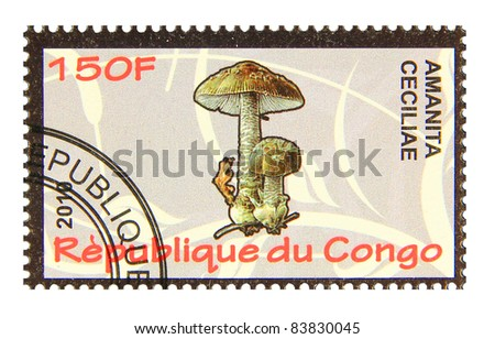 CONGO - CIRCA 2010: A stamp printed in Congo showing Snakeskin Grisette mushroom, circa 2010
