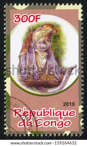 CONGO - CIRCA 2010: stamp printed by Congo, shows Proboscis monkey, circa 2010 - stock photo