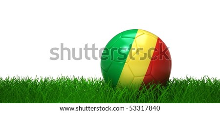Congo soccer ball lying in grass