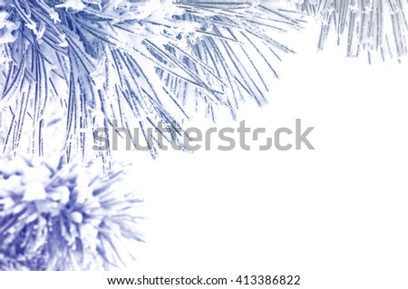 Conifer needles in snow