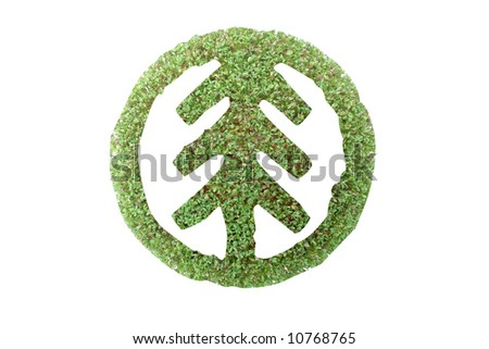 Coniferous tree symbol superimposed on green plant - recycled paper concept - stock photo