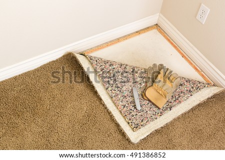 gloves and utility knife on pulled back carpet and pad in room