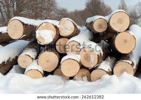 construction timber forest in winter - stock photo