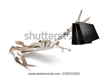 Consumerism concept, Crab carry shopping bag - stock photo
