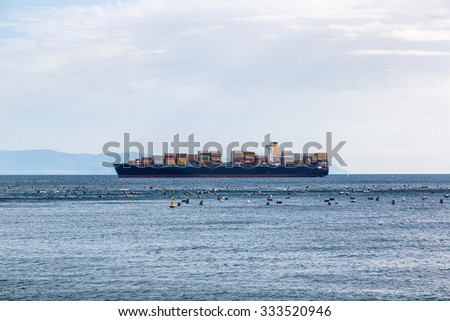 containers cargo ship in a summer day