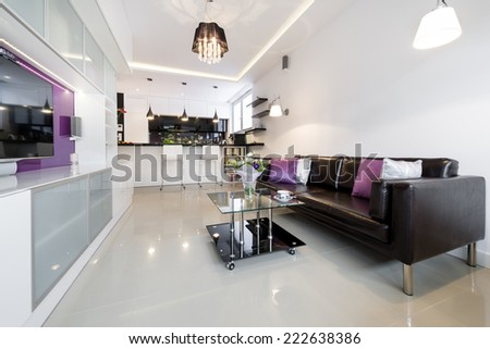 Contemporary living room in european style - stock photo