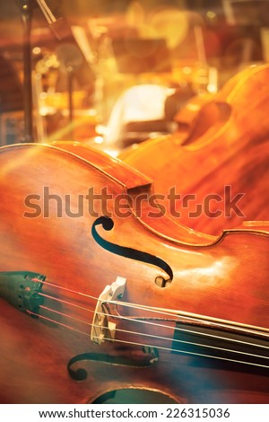Contrabass on stage - stock photo