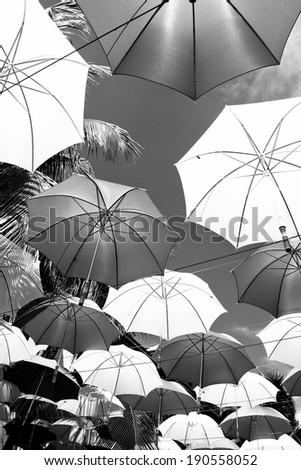 contrast umbrellas over bright sky background - stock photo