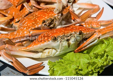 Cooked crab - stock photo