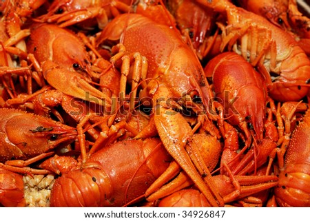 cooked crayfish - stock photo