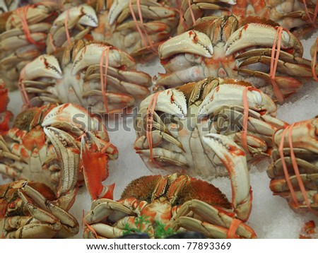 Cooked Dungeness crabs (Metacarcinus magister) on ice on the market stand - stock photo