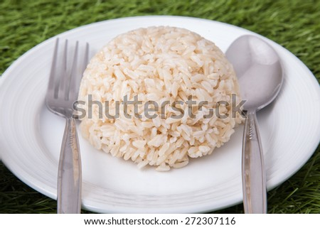 cooked jasmine brown rice on white plate with spoon and fork on the side, on green grass - stock photo