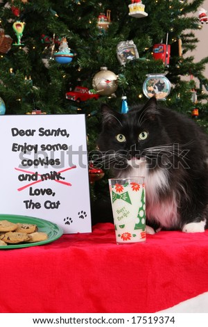 Cookies and Milk for Santa 2 - stock photo