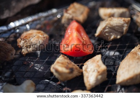 Cooking of a barbecue on a grill closeup