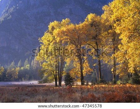 Cooks Meadow Morning in Fall - Yosemite National Park - stock photo
