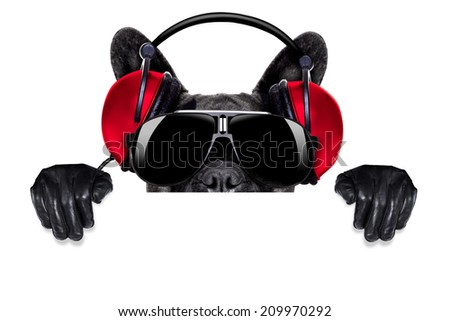 cool dj dog listening to music behind a white and blank banner or placard - stock photo