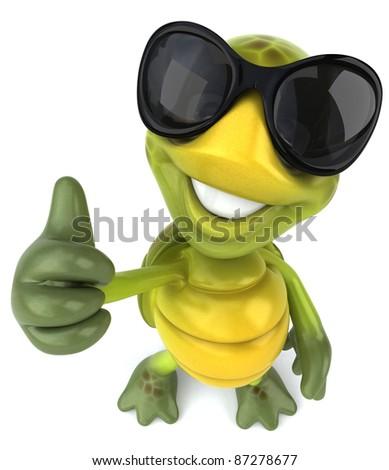 Cool turtle - stock photo