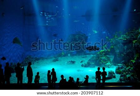 COPENHAGEN, DENMARK - JULY 1: Huge aquarium in Blue Planet National Aquarium Denmark on July 1, 2014 in Copenhagen - stock photo