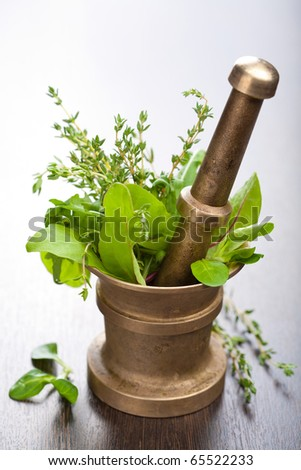 copper mortar with herbs - stock photo