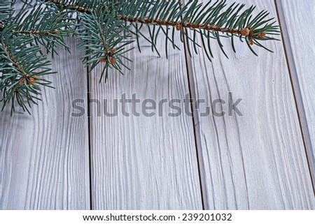 copyspace image branch of pinetree on old white painted wooden boards close up horizontal version - stock photo