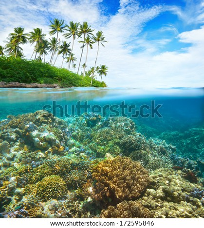 Coral reef on background of cloudy sky and island.  - stock photo