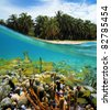 Coral reef sea floor with a shoal of tropical fish and beach with lush coconut palm trees split by waterline, Caribbean, Zapatillas islands, Panama - stock photo