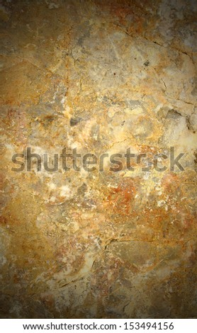 Coral rock textured background