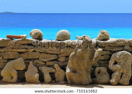 Corals and stones on the sea shore with azure tropical ocean in the background. Exotic island with stones and corals. Tropical rocky beach with dry coral shapes.