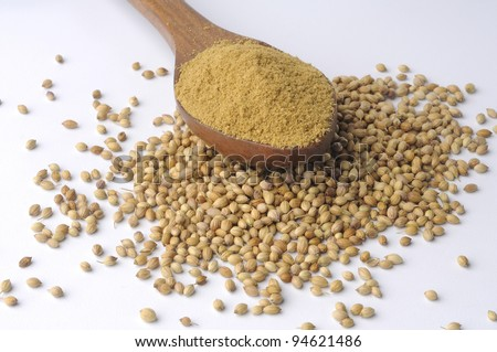 coriander, Indian spice, powder spices on spoons ,coriander powder with seeds - stock photo