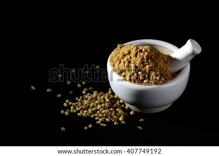 Coriander Powder and seeds with mortar and pestle on black background.