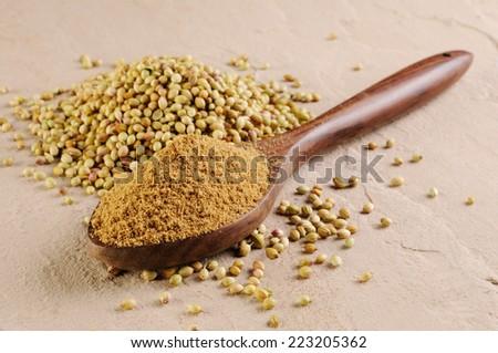 Coriander seedsr and powdered coriander - stock photo