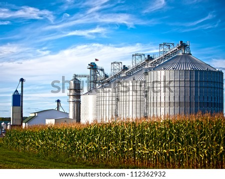 Corn dryer silos standing in a field of corn - stock photo