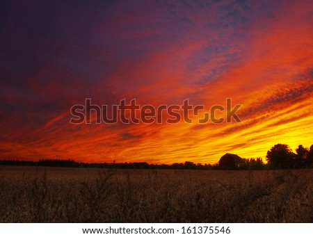 Corn field and barn with a dramatic sunset - stock photo