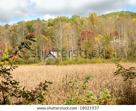 Corn field lays dormant at this farm.  Barn sits across field next to Appalachian Mountains. - stock photo