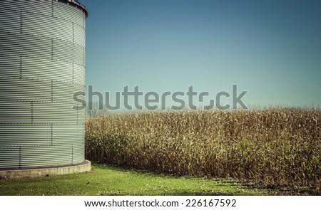 Corn field with steel silo  - fall season - stock photo