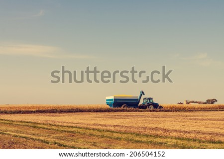 Corn Harvest in American Countryside - stock photo