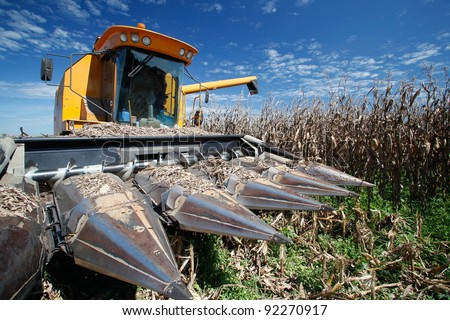 corn harvest on farmland in brazil