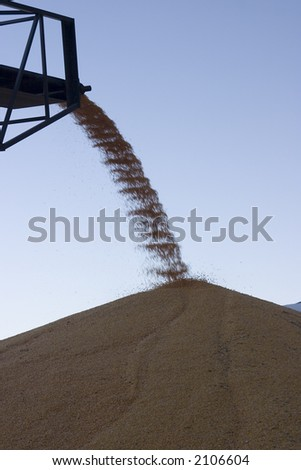 Corn harvest surplus being piled up - stock photo