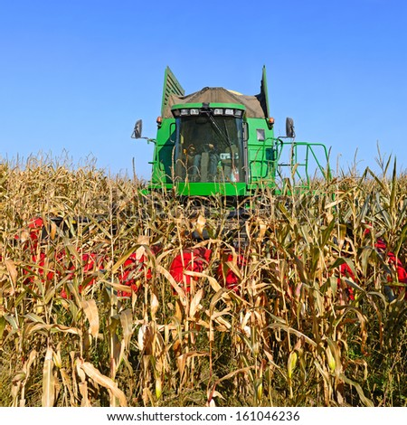 Corn harvesting combine - stock photo